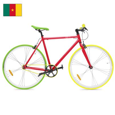 In den Kamerun Farben